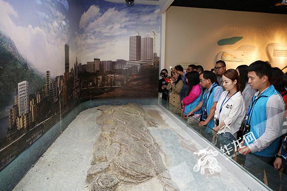 网媒记者们来到白鹤梁水下博物馆参观考察。 记者 刘嵩 摄3.jpg